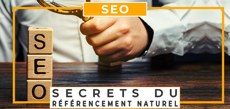 seo les secrets du référencement naturel