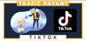 Tiktok Ads trafic payant